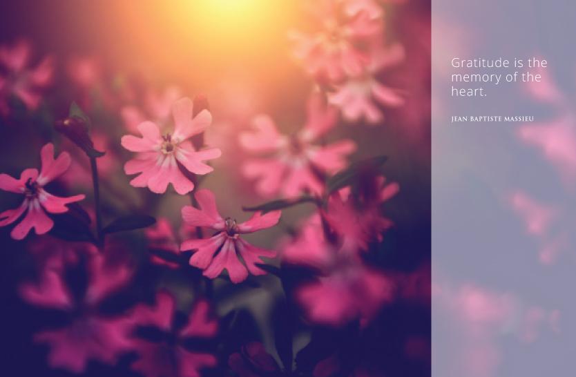 Daily Spirituality Quotes Heartfulness Magazine