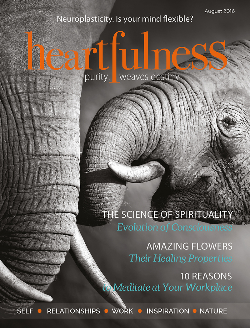 Heartfulness eMagazine - August 2016