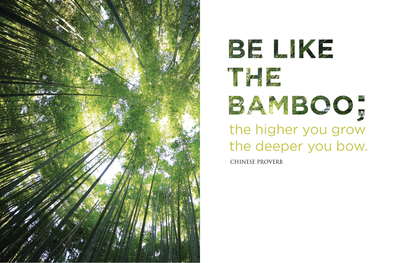 Be like the bamboo