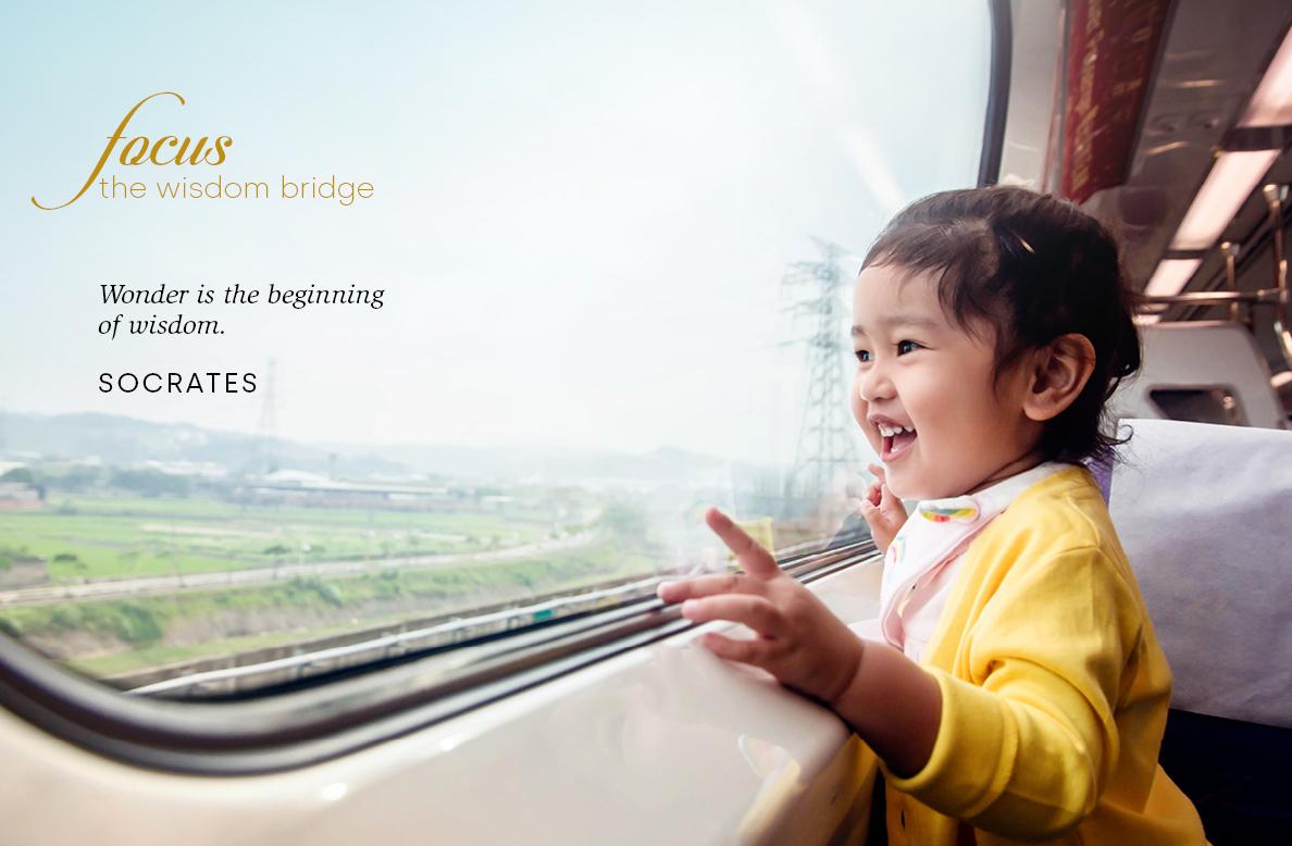 The wisdom bridge